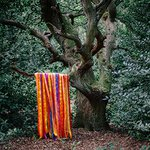 The animal spirits de James Holden & The Animal Spirits